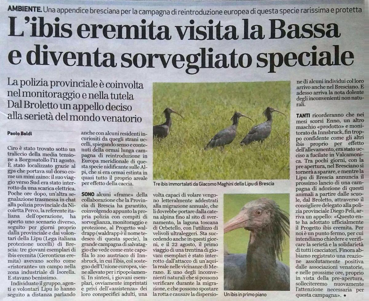 Bresciaoggi 26-08-2017